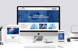 DSI Corporate Responsive Website