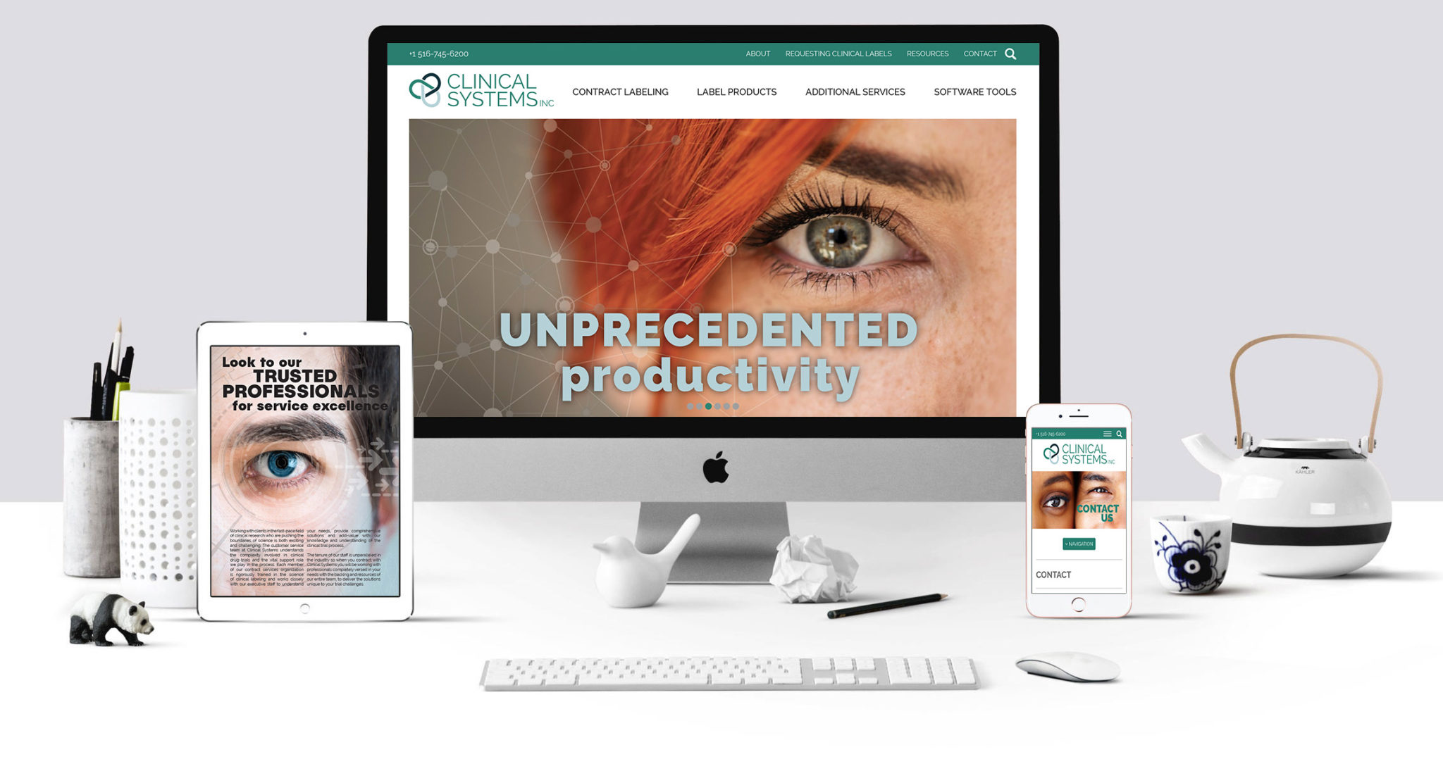 Clinical Systems Website Project